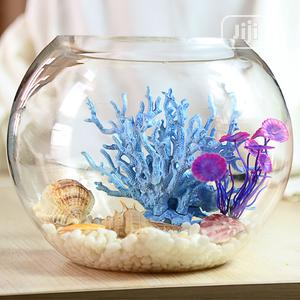 Fish Bowl of All Sizes With Various Designs   Fish for sale in Lagos State, Surulere