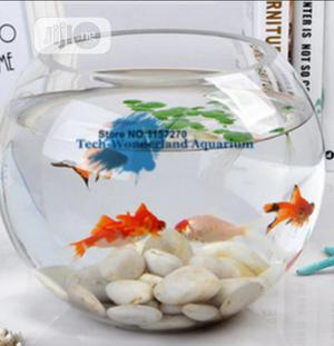 Fish Bowl Kit With Full Accessories   Fish for sale in Lagos State, Surulere