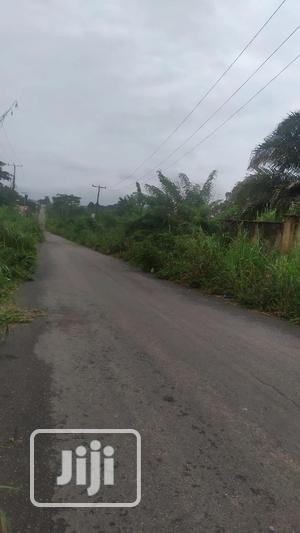 35 Acres of Land for Sale at Ido- Eruwa Road   Land & Plots For Sale for sale in Oyo State, Ido