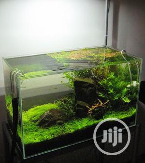 Full Set Floor Aquarium | Fish for sale in Lagos State, Surulere