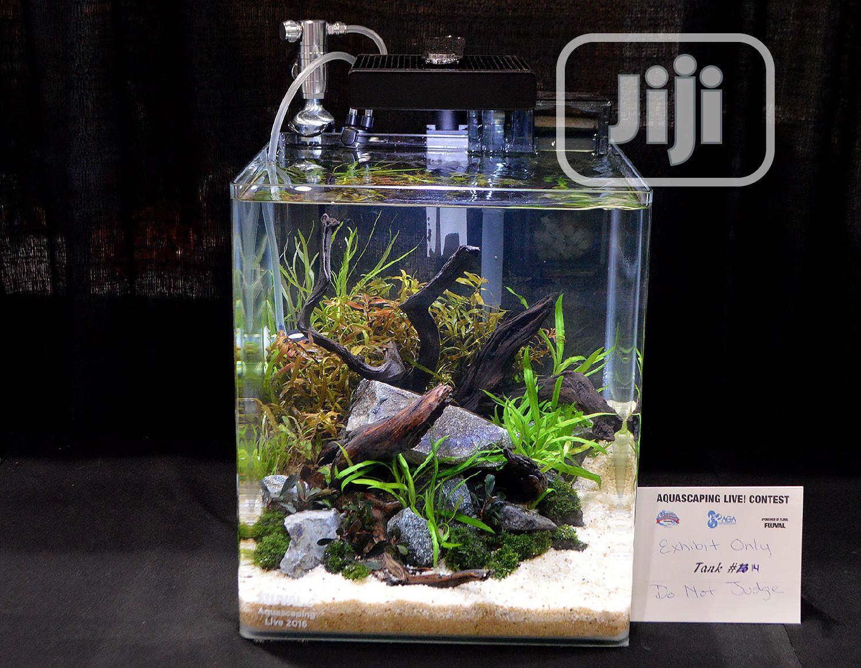 Mini Table Aquarium