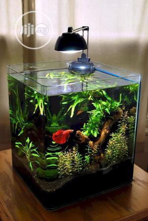 Best Designs Table Aquarium | Fish for sale in Lagos State, Surulere