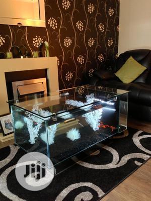 Center Table Aquarium With Full Accessories | Fish for sale in Lagos State, Surulere