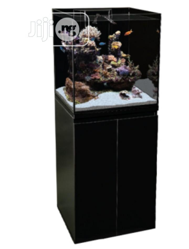 Standing Aquarium