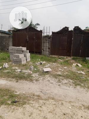Half Plot of Land for Sale at Ojo Area   Land & Plots For Sale for sale in Ojo, Ajangbadi