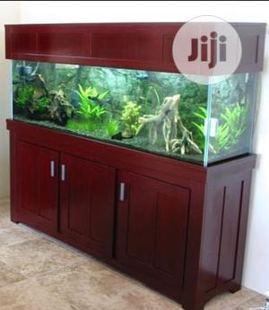 Luxury Aquariums | Fish for sale in Lagos State, Surulere