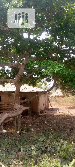 Farm Land for Sale in Odeda   Land & Plots For Sale for sale in Ogun State, Odeda