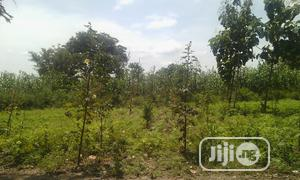 10hectare of Farm Land for Investors   Land & Plots For Sale for sale in Nasarawa State, Karu-Nasarawa