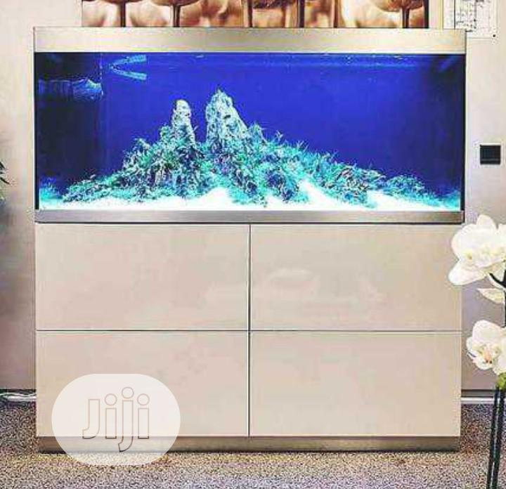 Your Mini Aquarium And Standing Of All Kinds