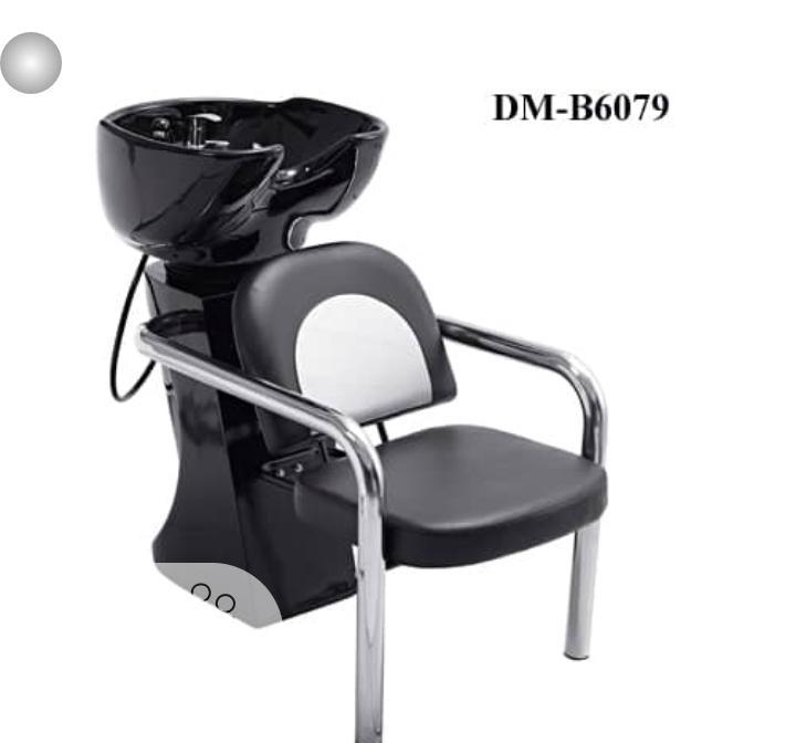 Saloon Chair + Hair ( Washing) Tub.