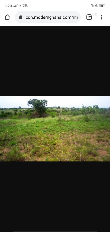 11 Plots of Land at