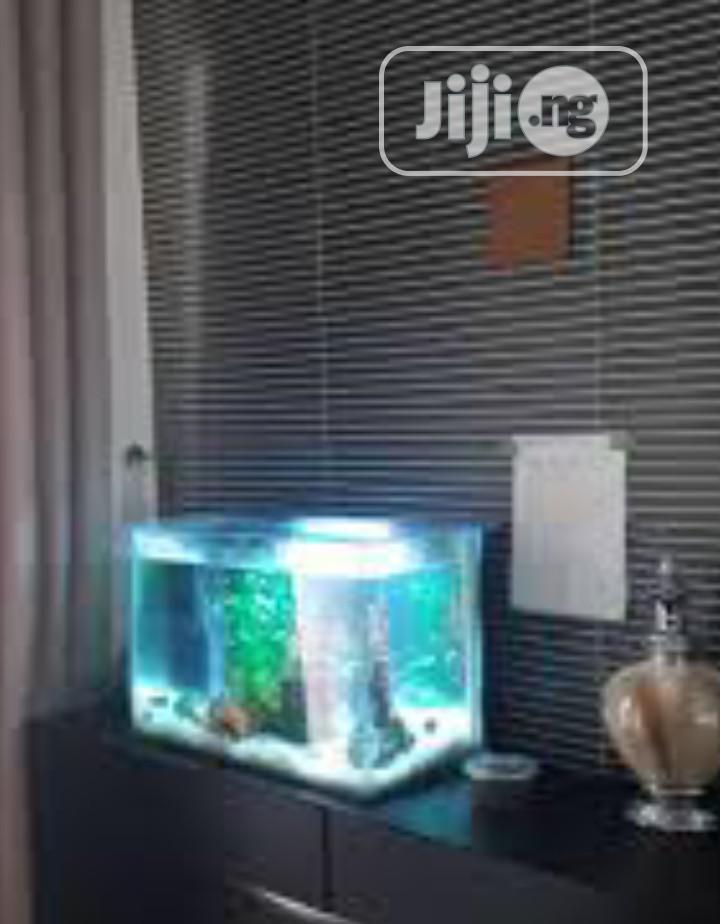 Mini Aquarium And Accessories