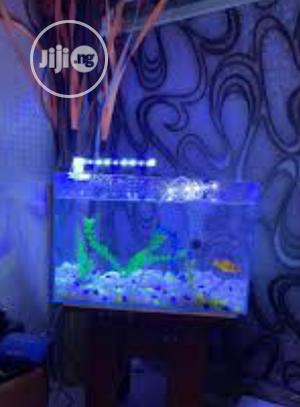 Mini Fish Tank And Accessories | Fish for sale in Lagos State, Surulere