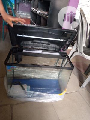 Imported Fish Aquarium | Fish for sale in Lagos State, Surulere