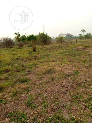 Plots Of Land (2)For Sale At Magboro - City Town.   Land & Plots For Sale for sale in Ogun State, Ifo