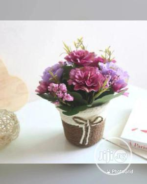 Flower With Basket   Garden for sale in Lagos State, Lagos Island (Eko)