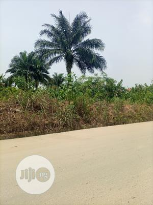 1/2 Plots of Lands at Rumunduru New Layout | Land & Plots for Rent for sale in Rivers State, Obio-Akpor