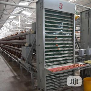 Poultry Cage China Automatic Poultry Cage | Farm Machinery & Equipment for sale in Taraba State, Jalingo