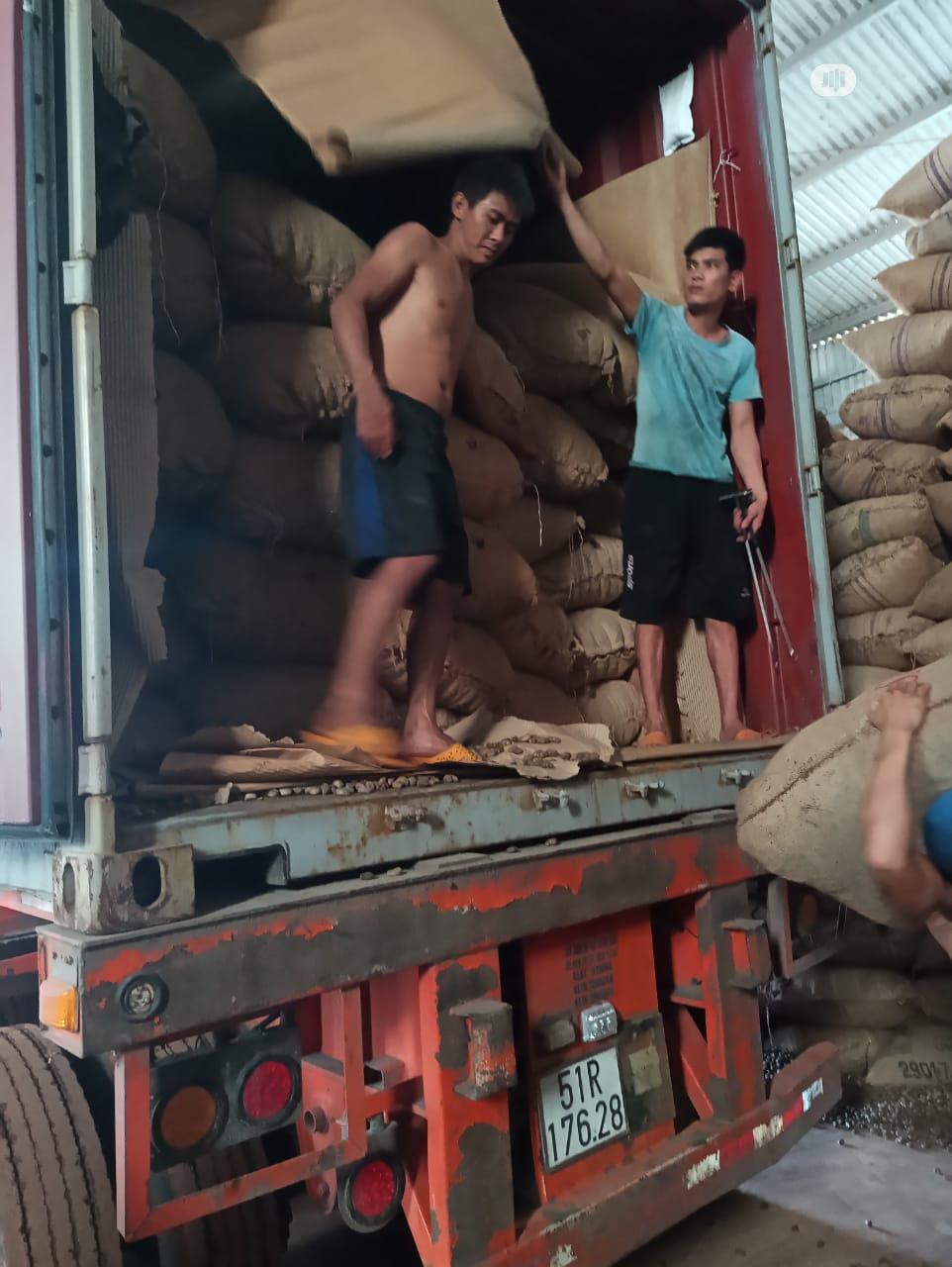 Raw Cashew Nut for Sale