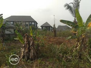 For Sale: 3 Plots at Igwuruta, Eneka Road, Port Harcourt   Land & Plots For Sale for sale in Rivers State, Obio-Akpor