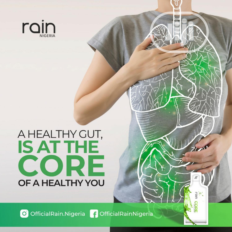 Rain Soul for Arthritis, Hbp, Diabetes, Cancer, Fibroids Etc | Vitamins & Supplements for sale in Ibadan, Oyo State, Nigeria