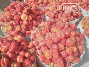 Red Pepper | Meals & Drinks for sale in Plateau State, Jos