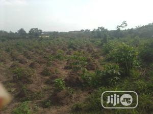 50ft by 95ft Land for Sale   Land & Plots For Sale for sale in Delta State, Ugheli
