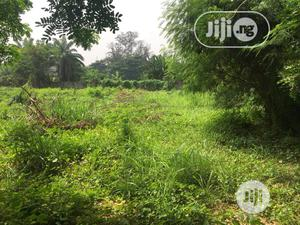 1 Acres of Land   Land & Plots For Sale for sale in Oyo State, Lagelu