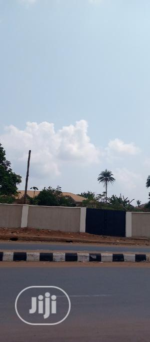 Commercial Land for Sale at Okpanam Asaba Road. | Land & Plots For Sale for sale in Delta State, Oshimili North