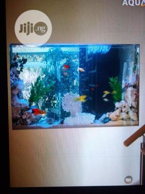 Wall Aquarium   Fish for sale in Lagos State, Surulere