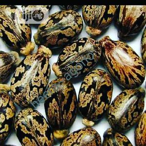 Castor Seeds   Sexual Wellness for sale in Lagos State, Isolo