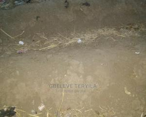 Farm Lands For Farming Activities Like Crops, Livestocks   Land & Plots For Sale for sale in Nasarawa State, Karu-Nasarawa