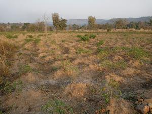 Mining and Agricultural Land Property   Land & Plots For Sale for sale in Nasarawa State, Akwanga