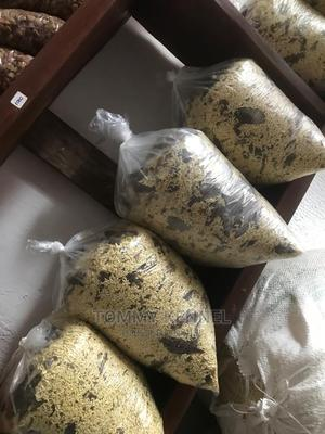 Pet Food Available   Pet's Accessories for sale in Ogun State, Ijebu Ode