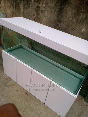 Fish Aquarium | Fish for sale in Lagos State, Surulere