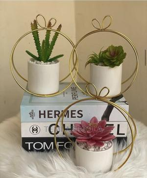 Cactus Plant for Table Deco   Home Accessories for sale in Lagos State, Ikeja