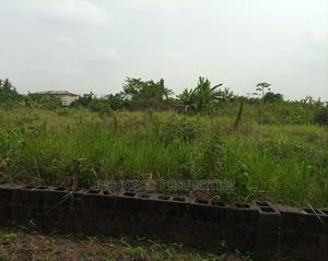 A Full Plot on a Corner Piece for Sale   Land & Plots For Sale for sale in Ogun State, Ado-Odo/Ota