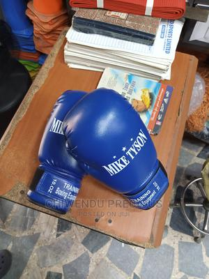 Championship Boxing Gloves   Sports Equipment for sale in Lagos State, Ikeja
