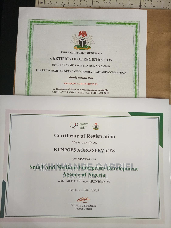 Professional Cac Certificate Processing | Legal Services for sale in Ado-Odo/Ota, Ogun State, Nigeria