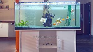 Stand Aquarium | Fish for sale in Lagos State, Surulere