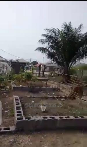 Affordable Full Plot of Land With Survey Plan Receipt | Land & Plots For Sale for sale in Lagos State, Ajah