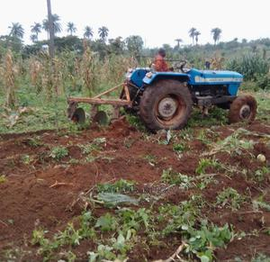 *Invest in Plantain Farm and Get Return on Investment * | Land & Plots for Rent for sale in Ogun State, Remo North