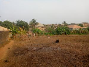 Nice 3 Plots of Land in a Developing Estate at Akala Express   Land & Plots For Sale for sale in Ibadan, Akala Express