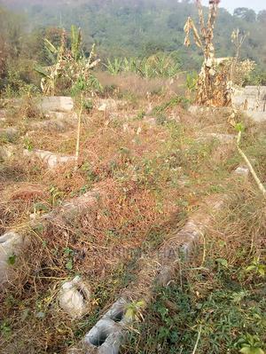 One Plot of Land   Land & Plots For Sale for sale in Ekiti State, Ado Ekiti