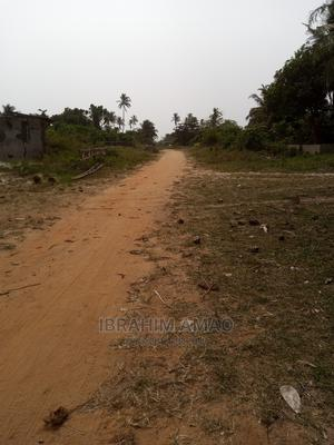 40 Acres Farmland Next to a Stream in Igbogila 300k Per Acre   Land & Plots For Sale for sale in Ogun State, Ayetoro