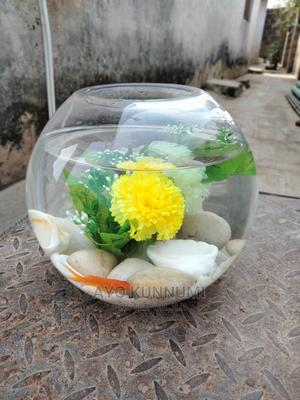 Beautiful Fish Bowl   Fish for sale in Lagos State, Lagos Island (Eko)