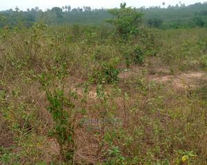 Survey and Family Receipt   Land & Plots For Sale for sale in Ogun State, Odeda