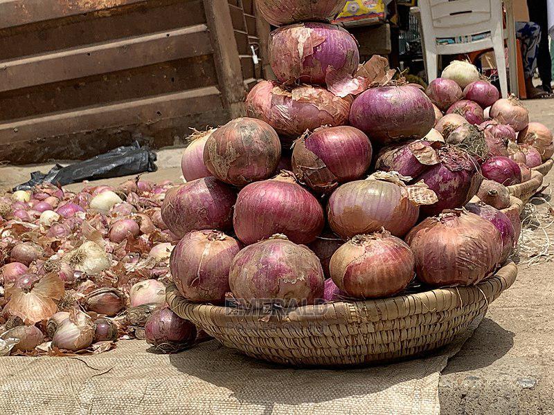 Archive: Custard Bucket of Onion for Sale