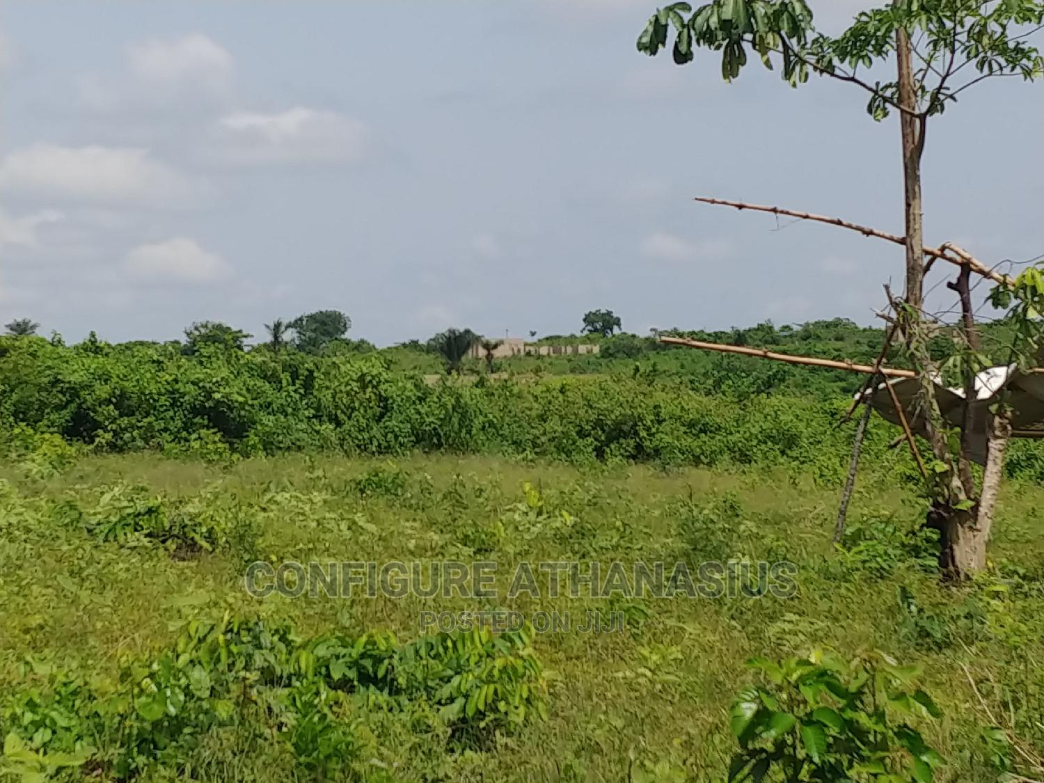 Plots of Land for Sale