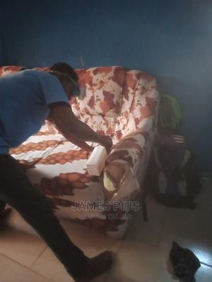 Guarantee Bedbugs Fumigation   Cleaning Services for sale in Lagos State, Surulere